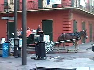 A few of the horse drawn carriages were busy.